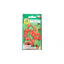 Pomidor koktajlowy Bajaja 1 g
