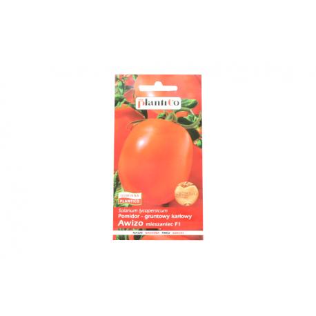 Pomidor gruntowy karłowy Awizo mieszaniec F1 0,5 g